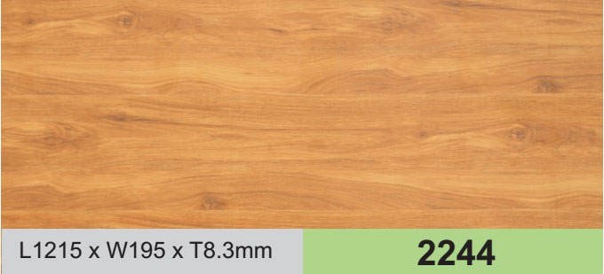 Sàn gỗ công nghiệp Wilson W 2244
